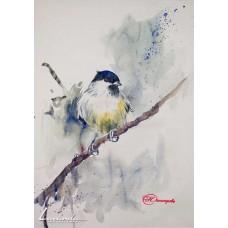 Птиче в синьо