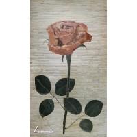 Роза - Петър Вълчев